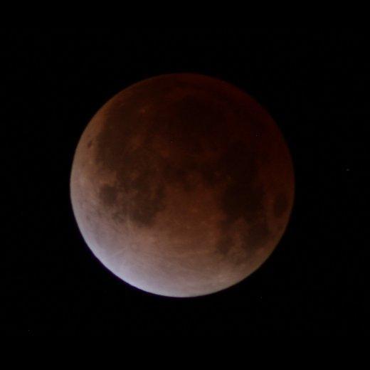 今月の満月は8日(水)19時50分です。8日(水)日没後の東の空で皆既月食が見られます。 部分月食の開始は18時14分、皆既食の開始は19時24分で食の最大は19時54分になります。夜間は冷え込みますので防寒対策のうえ観月して下さい。 pic.twitter.com/Yio32lQRjV