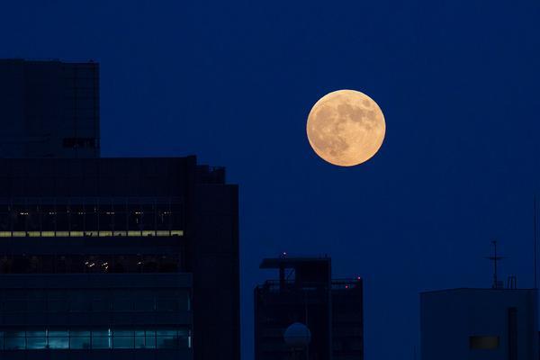 東京の月、こんな感じで昇ってきました。月食、見ることが出来そうだね。 pic.twitter.com/EuimKbqINq