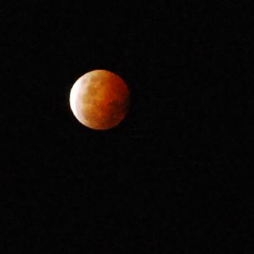 The lunar eclipse as seen from my camera in Melbourne. Actually a gorgeous night for it #supermoon #supermoon2014 http://t.co/NYk3MYBIDd