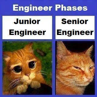 """@DarknessGate: IT engineers skills development phases...looks on their face http://t.co/OLgwDESX90"" < HA!!"