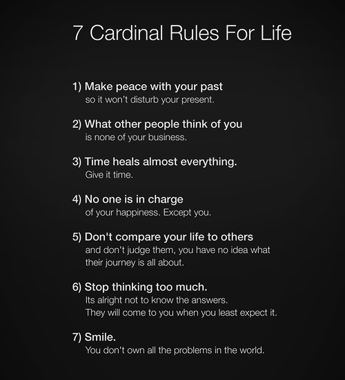 Spot on RT @SexCigarsBooze: 7 cardinal rules for #life http://t.co/ffxXhMMGIk