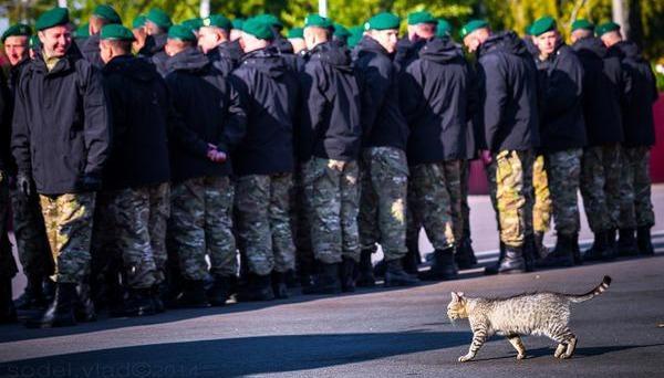 Украина должна увеличить численность армии, - Смешко - Цензор.НЕТ 6680