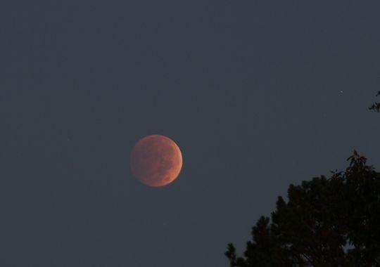 """Did you see the """"blood moon"""" last night? See the best pictures from @YourTake contributors: http://t.co/VvqirhBGF4 http://t.co/qtcYboAhOU"""
