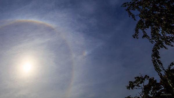 太陽の周りの暈、写真中央の幻日とその右上にのびる幻日環。今東京で撮影しました。これらをさがしたり写真に撮る時は太陽の光で目をいためないよう気をつけてください。 pic.twitter.com/Bi6dD69HGD