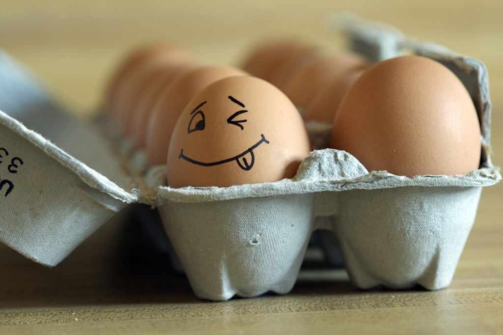 Для, смешные картинки про яйца