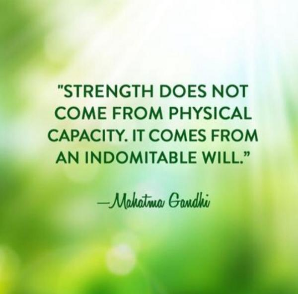 Image result for strength from indomitable will