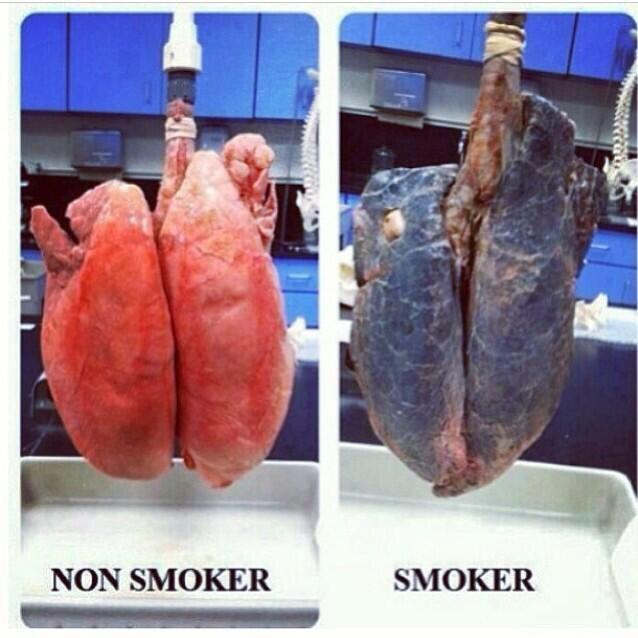 dating a smoker as a non smoker I just had a life changing thing happen to me i am a non smoker who started dating a heavy smoker it was a very big mistake i have had a very hard.