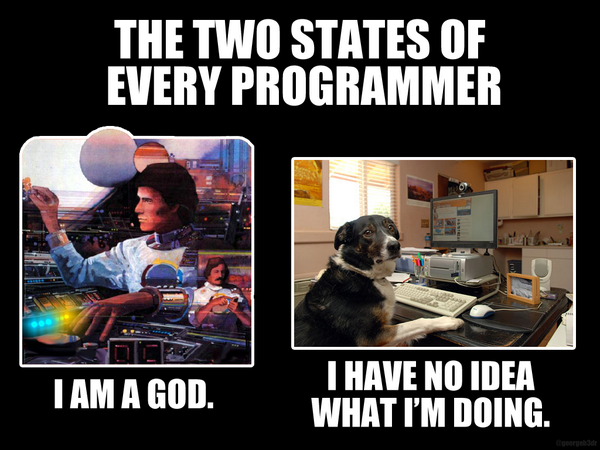 The two states of being a programmer. (usually the dog)