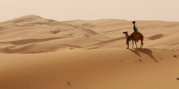 ICYMI: We asked a camel to help us out with a #StreetView tour of the the Liwa Desert → http://t.co/gdfuHLlPBE http://t.co/P36e8HRI4f