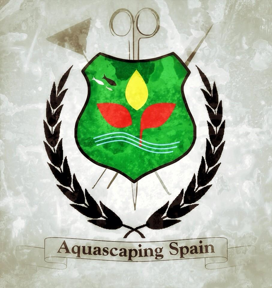 Aquascaping spain on twitter hoy inaguramos aquascaping spain en facebook quereis - Aquascape espana ...