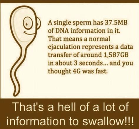 #lol http://t.co/vFrWR0V29X