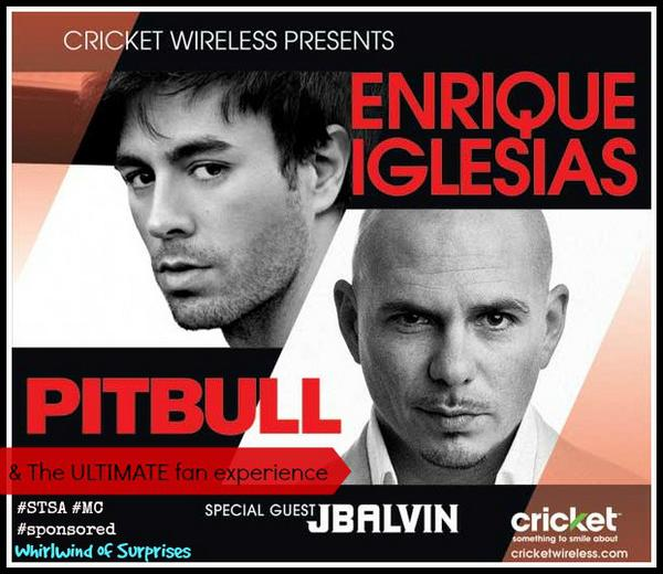 Fall 2014 Pitbull and Enrique Tour #STSA