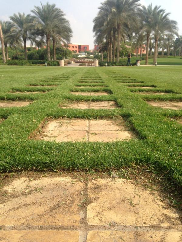 AUC garden is definitely a beauty! #JRLweb #JRLweb http://t.co/KBG3tEwQ31