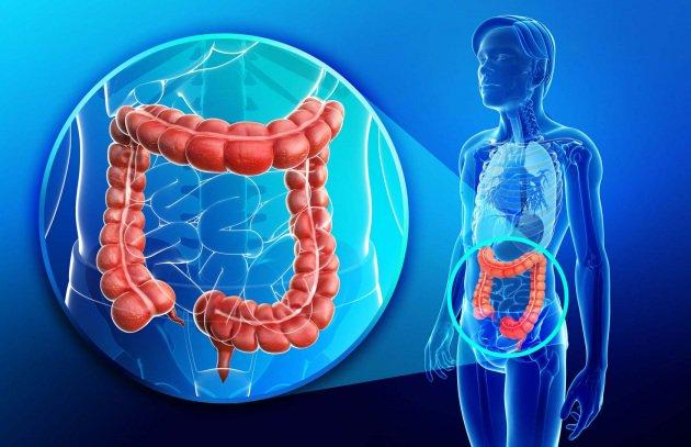 Malattia di Crohn, in arrivo nuovi farmaci biotecnologici | Salute News