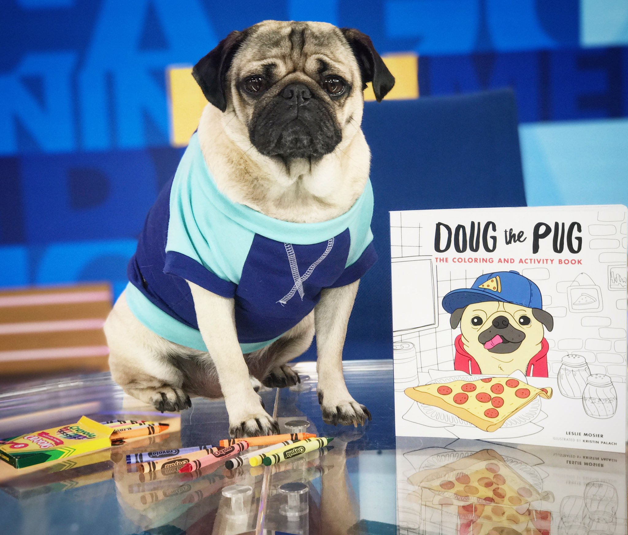 Good Morning America On Twitter Congrats Itsdougthepug Your Coloring Book Out This Thanks For Stopping By Times Square