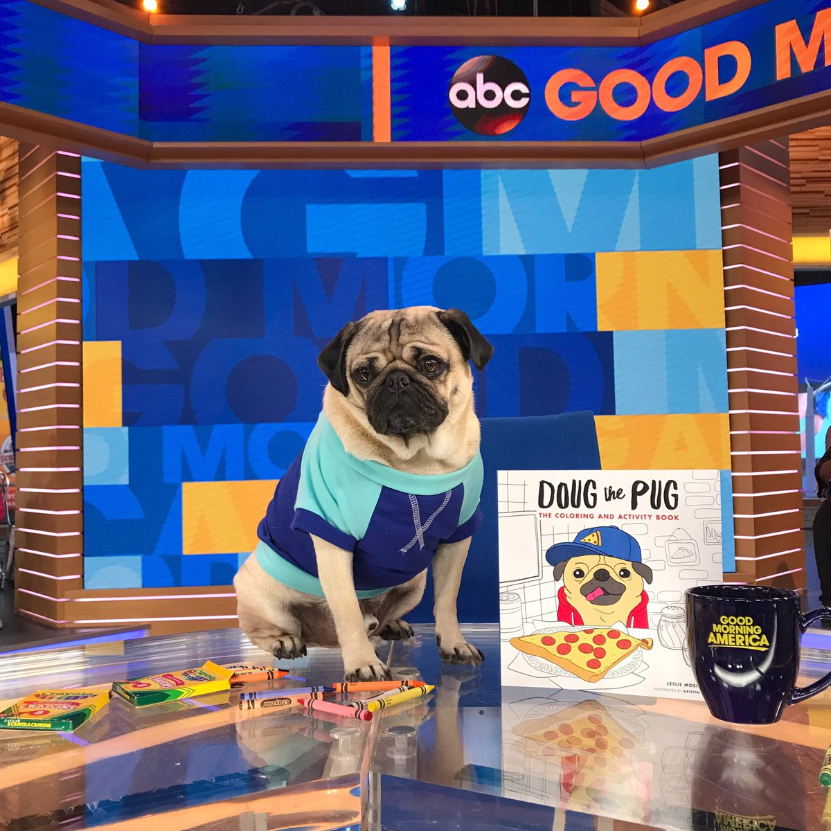 Doug the pug on twitter i give u permission to take the rest of doug the pug on twitter i give u permission to take the rest of the day off to color the coloring book is out everywhere today m4hsunfo