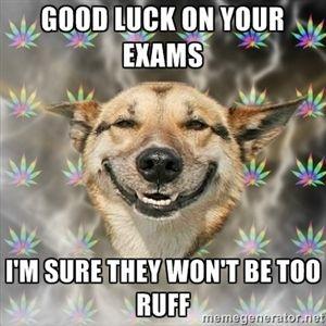 You&#39;ve got this my friends #examseason #ullife #goodluck<br>http://pic.twitter.com/Uz8QR1Wdog