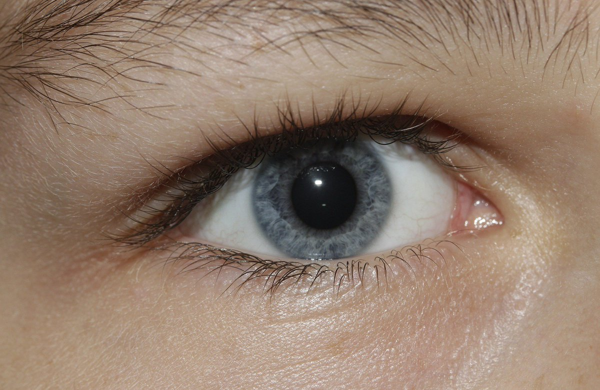 Pupils dilate sexually attracted