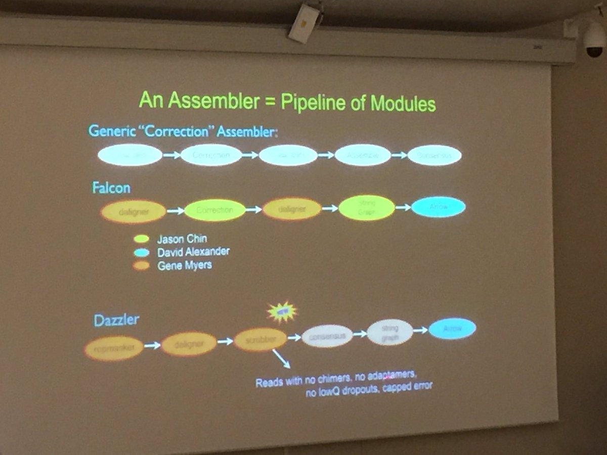 Genome assembly processes via Gene Myers. #SMRTbfx #SMRTLeiden @GeneMyers https://t.co/aam2lZCcBP
