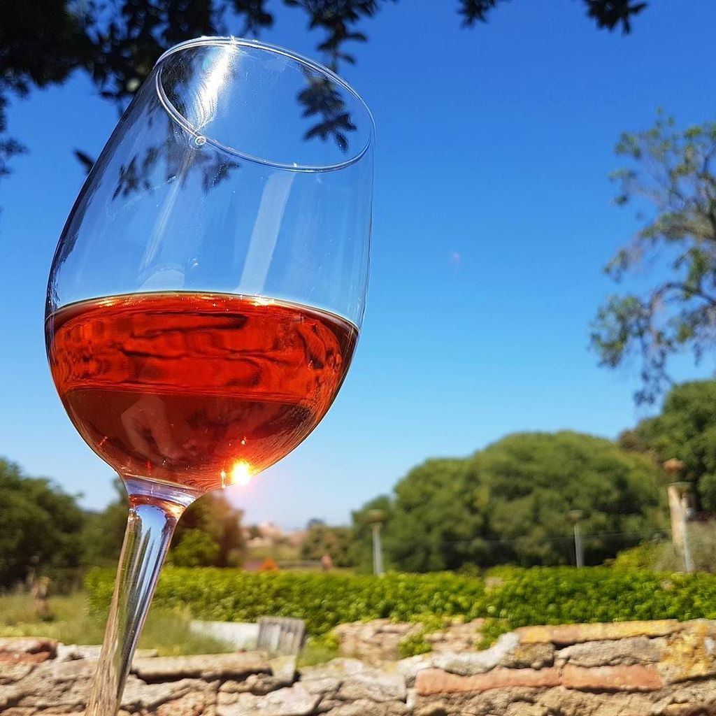 Today is a rose #Wine day for sure #InCostaBrava. #Travel https://t.co/JjGHQ5MkA2 https://t.co/FMCOhsbm0r