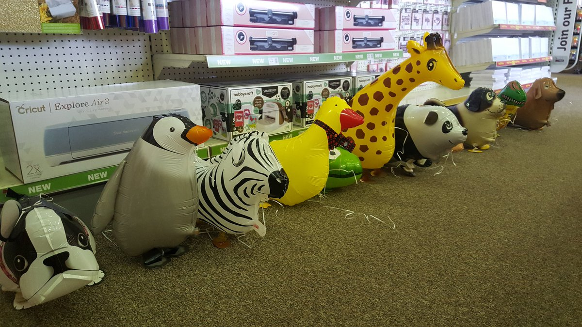 We have some visitors this morning! Someone is going to have a very special #animal themed #party today! #balloons #rdguk #hobbycraft<br>http://pic.twitter.com/OnJsx3BNoj