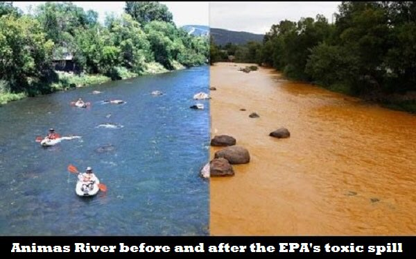 One of the largest and most harmful toxic spills recently has been by our own EPA Why didn't the environmental 'activists' protest this? 🤔