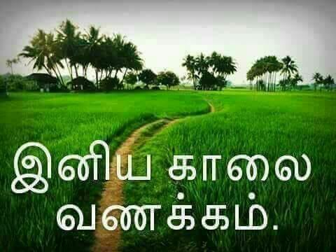 Tamil On Twitter Good Morning To All