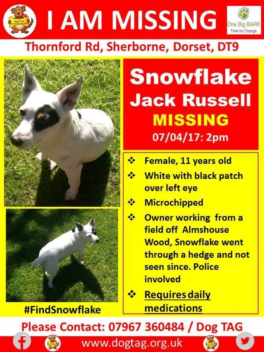 http:// buff.ly/2pQ1AcP  &nbsp;   where are you #FindSnowflake plse #S&amp;S #scanme<br>http://pic.twitter.com/SbLdHOZWWT