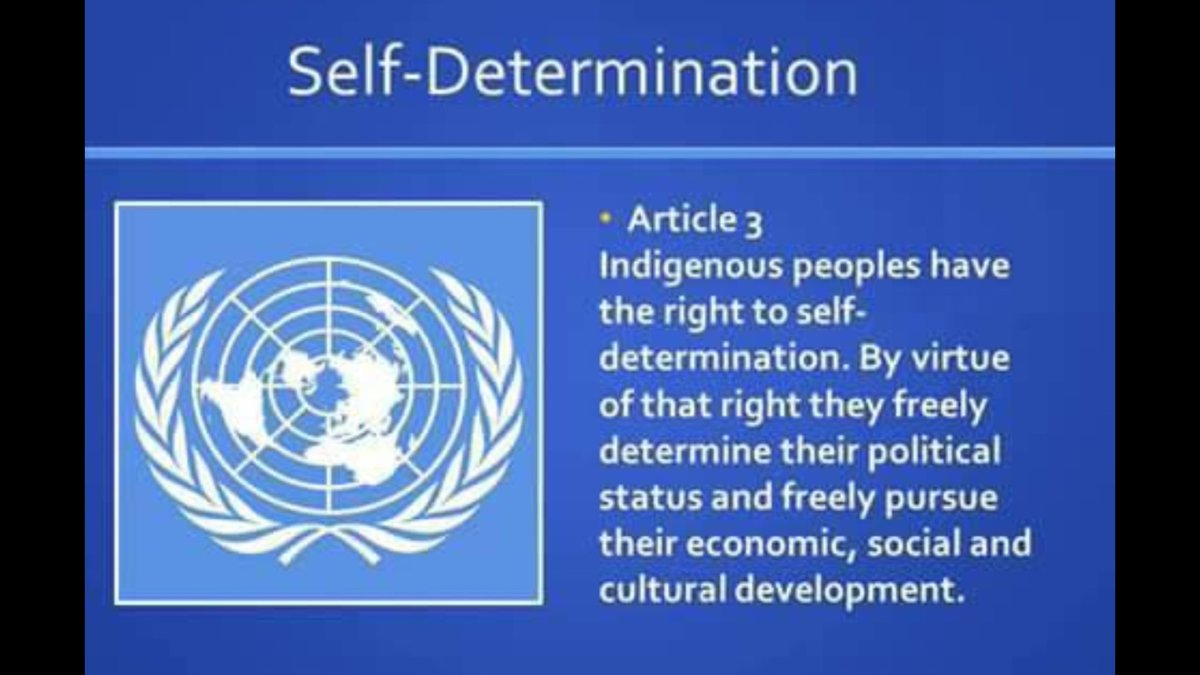 WHY IS @UN#MUTE ABOUT#GROSS HUMAN RT ABUSE AGAINST #BIAFRANS IN NIGERIA? #BIAFRANS DESERVE #SELF #DETERMINATION @EU<br>http://pic.twitter.com/BElR0AtRak