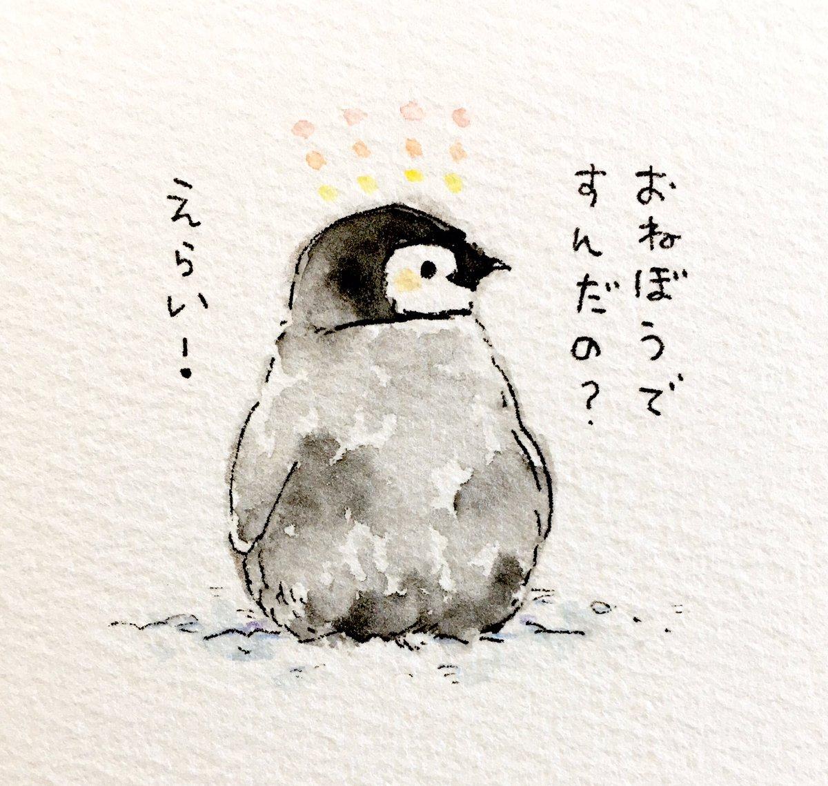 るるてあ On Twitter 肯定ペンギンのあかちゃん その15