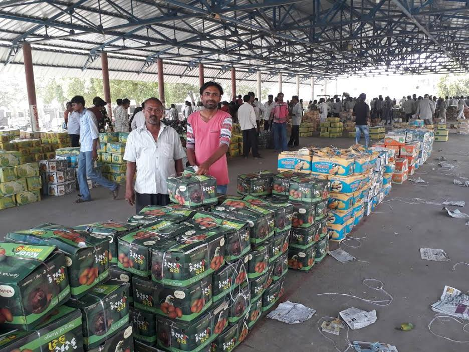 25 tonne Kesar mango exported so far from Talala market yard in Gujarat, auction to start on 3rd May