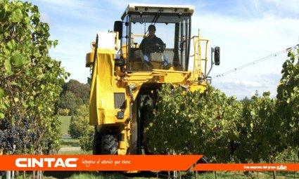 #CentralCintac se preocupa por el medio ambiente, no utiliza químicos nocivos, tierras menos contaminadas. http://hubs.ly/H076PHD0