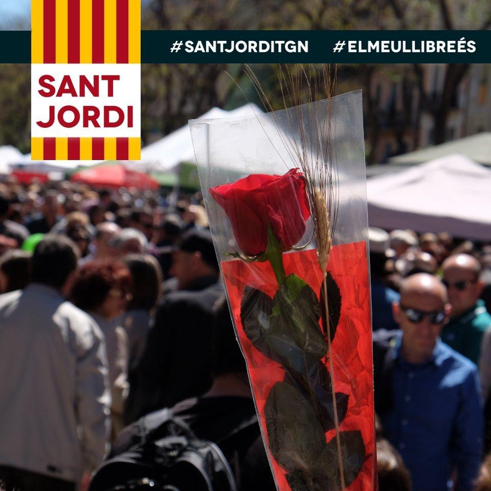 Thumbnail for #elmeullibreés