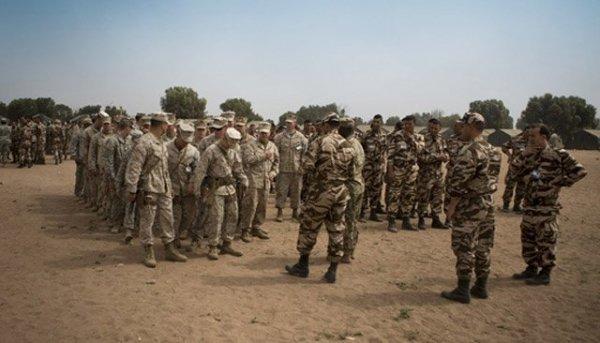 """انطلاق مناورات """"الأسد الإفريقي 17 """" في المغرب بمشاركة أمريكية C-HPqXoXoAUlKqC"""