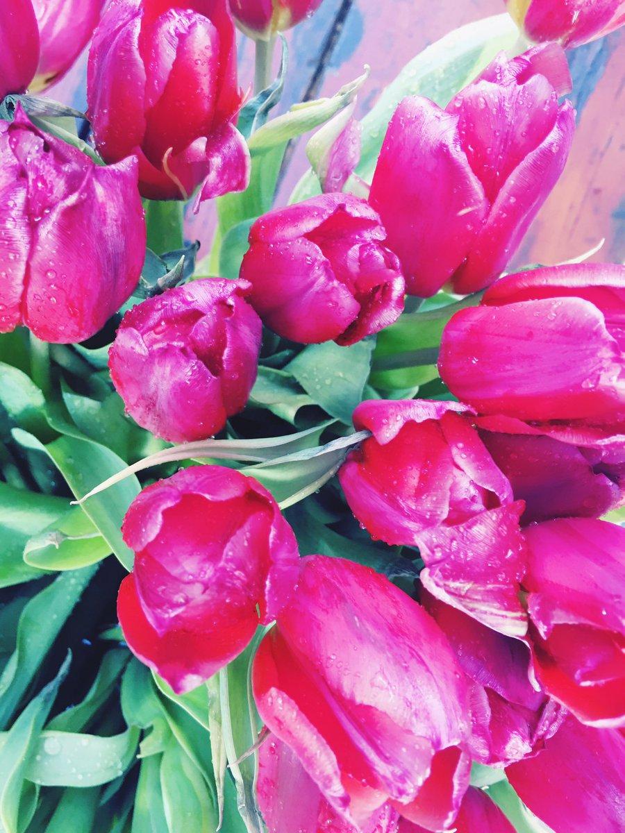 Mrs Unicorn On Twitter Ich Liebe Blumen Mein Gute Laune