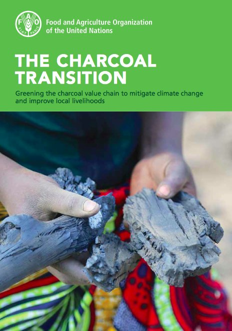 Free publication: Greening the #charcoal value chain to mitigate #climatechange &amp; improve local livelihoods  http:// bit.ly/2nfQ3ly  &nbsp;  <br>http://pic.twitter.com/3exhvMufQV