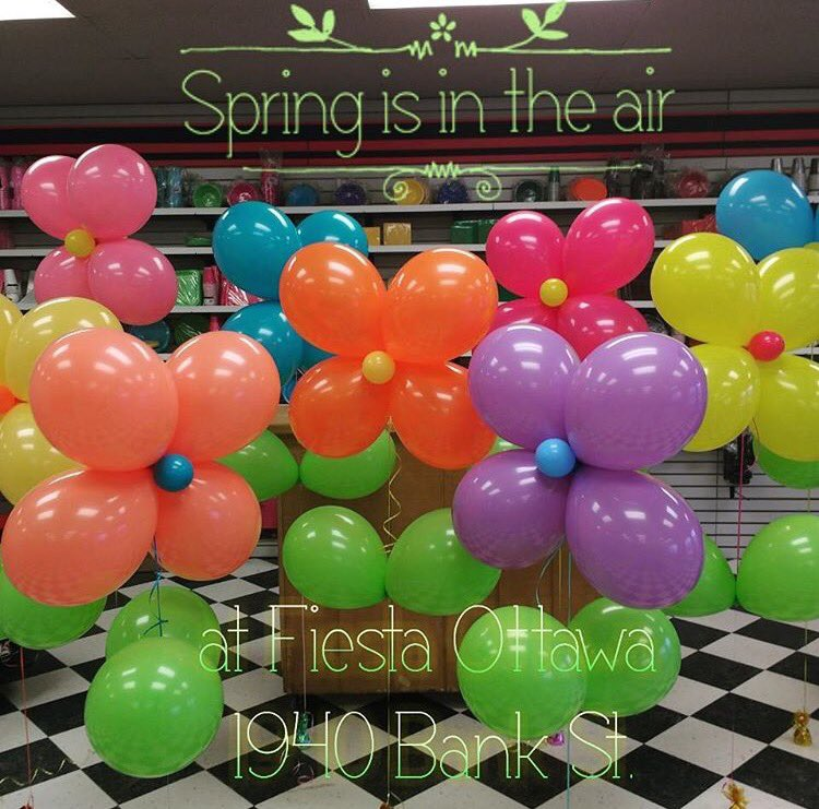 Weather in #Ottawa has been looking pretty spectacular! Why not celebrate with flower balloons! Order yours today! #Orleans #Balloons  <br>http://pic.twitter.com/qc72HgNr6v