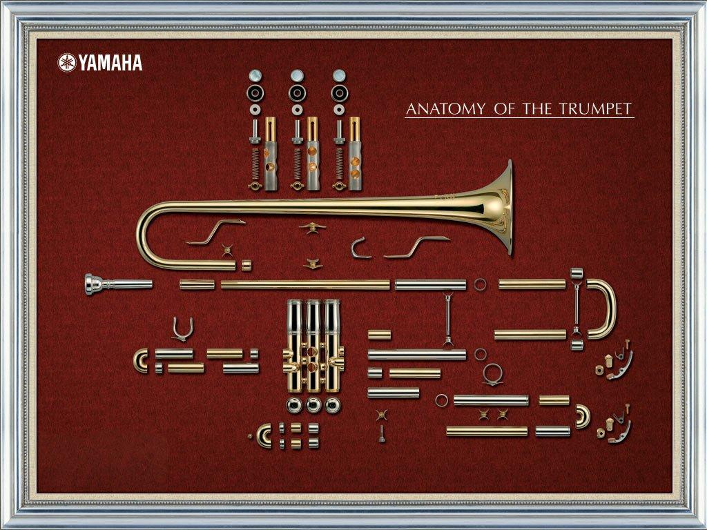 ヤマハ 音楽部 On Twitter 分解図が美しい トランペットの分解図 ベルの曲線の感じが素敵ですよね O V O バルブの構造も興味深い トランペット 管楽器 吹奏楽器 壁紙にどうぞ 待ちうけ