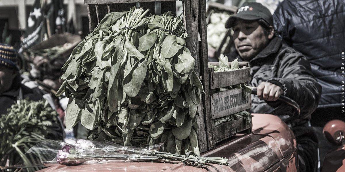 Lunes de #verdurazo, productores protestarán en la Plaza de Mayo https...
