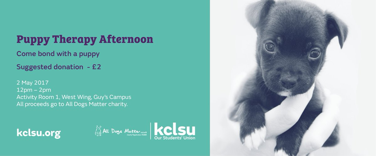 Take a break from revision with some much-needed puppy cuddles at Guy's Campus next week