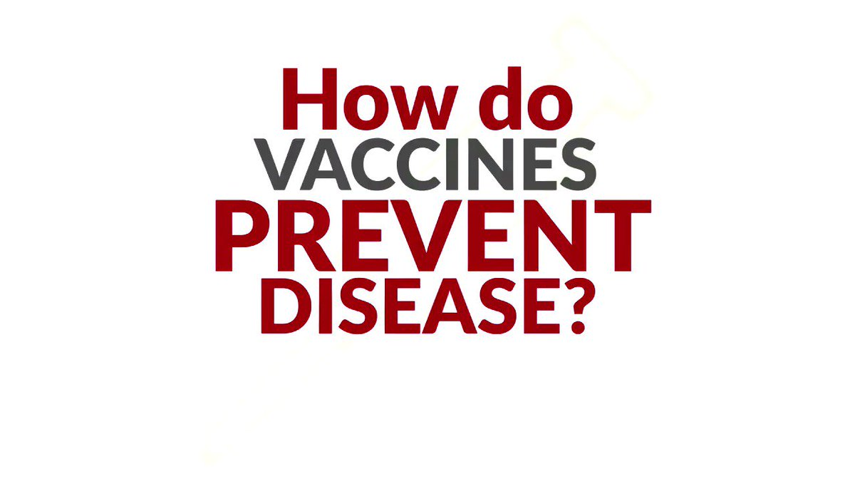 Vaccines are one of our most powerful public health tools. Here's how they prevent disease. #NIAM17 https://t.co/w1MlEKHG1A