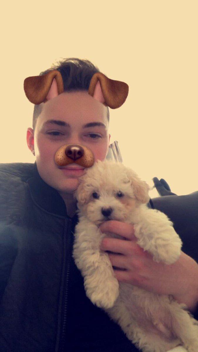 Lance Stewart S Dog Breed