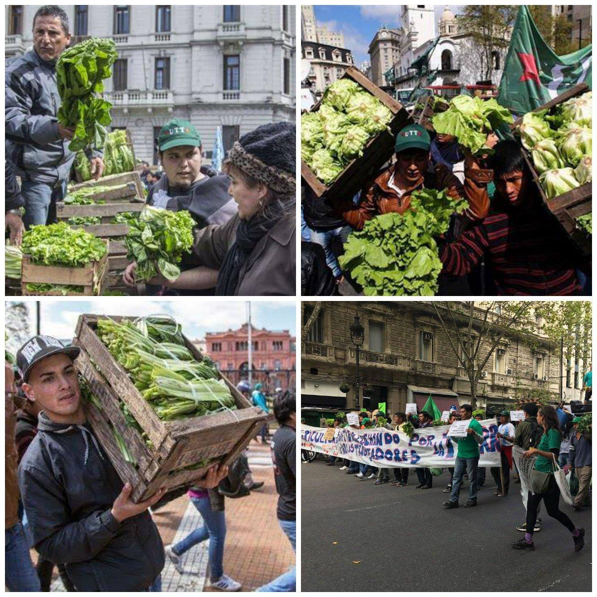 #EnFotos | #Verdurazo: Reclamo por leyes a favor de los productores en...