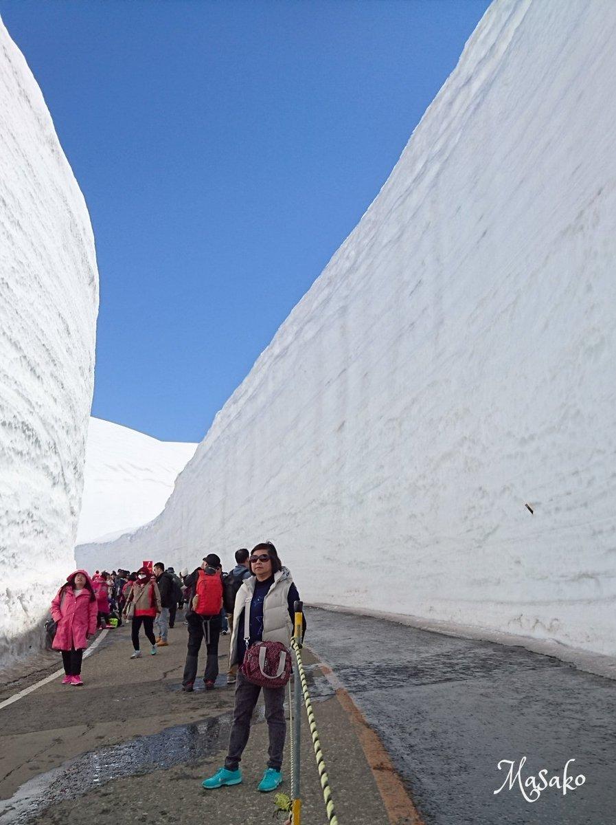 立山の山旅、天気に恵まれ最高でした!「雪の大谷」の高さは19m👀