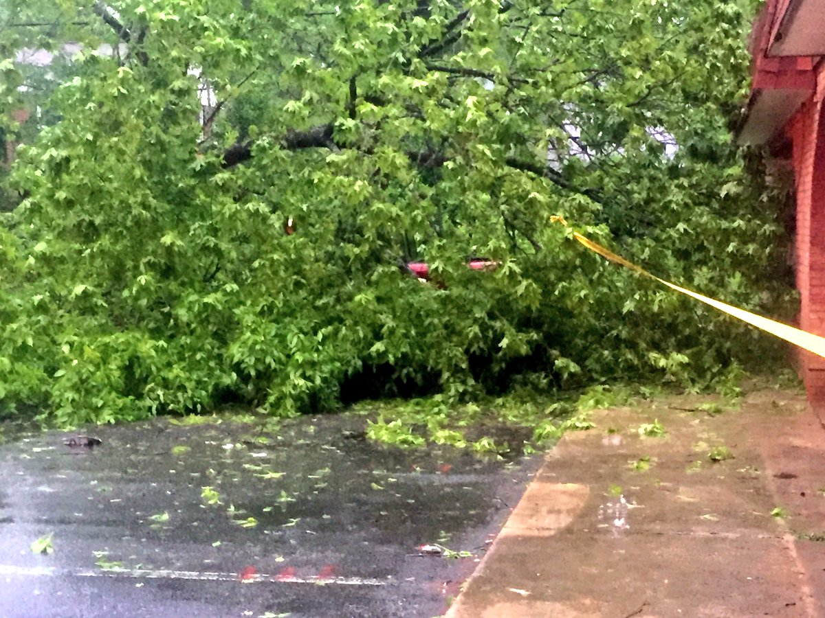 nbc charlotte wcnc twitter trees down all over the place this one is off patio ct in east charlotte apt complex parking lot crushed a car took out a light wcncpic twitter com