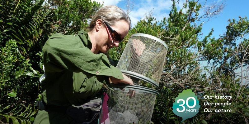 2011: Marieke Lettink extracts a skink from a trap during a survey in South Westland. #DOCturns30 https://t.co/7WAzkDF4XG