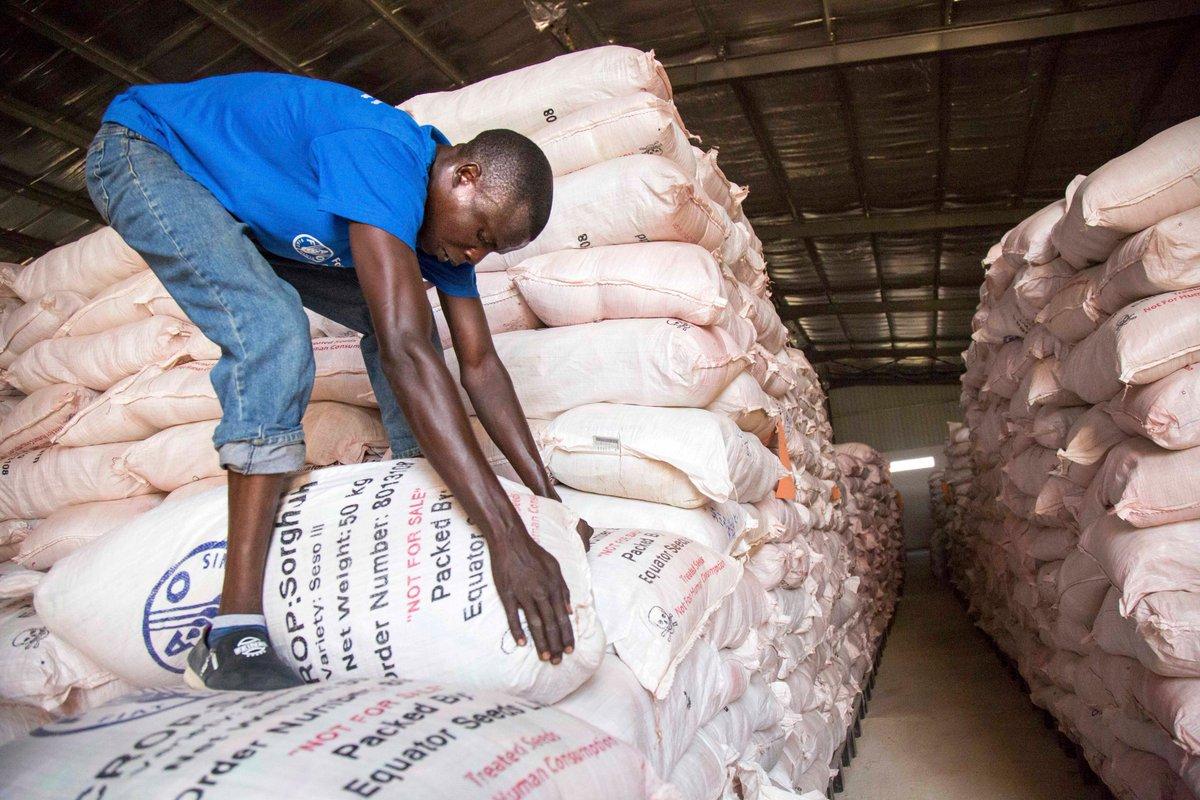 FAO in South Sudan on Twitter: