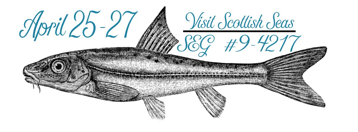 We have MSC retail & foodservice options - fresh, frozen or v-added #SEG17