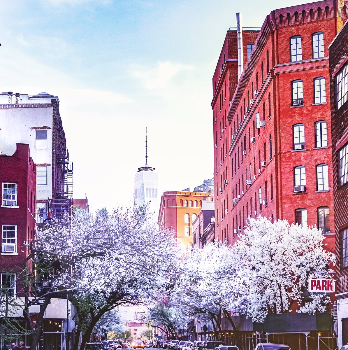 New York City, Spring...  🌸  #nyc #ttot #TravelTuesday #sakura #cherry...
