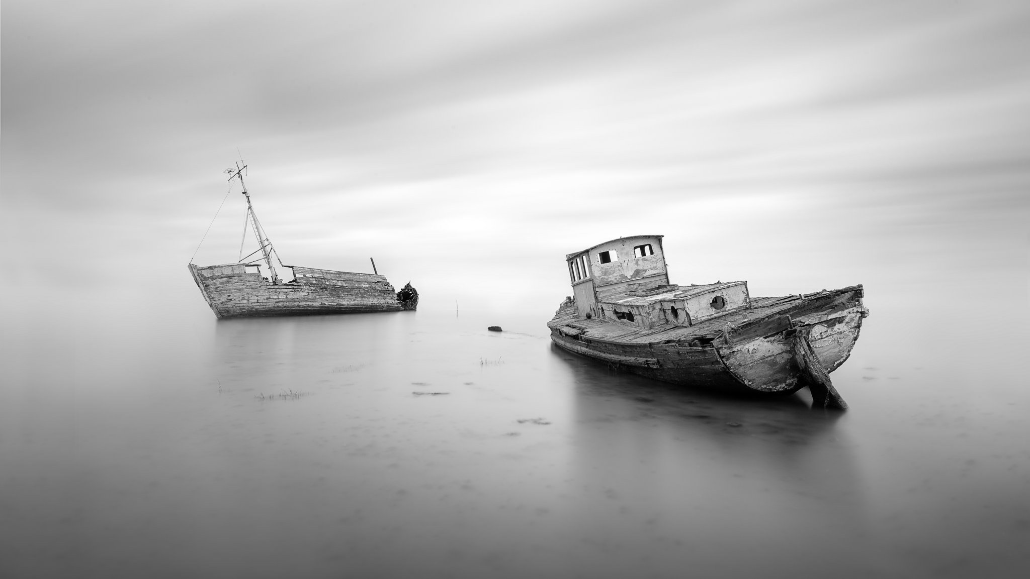 Right then. First on the shortlist this week is @DWPhotography76 with these two old boys from Suffolk #WexMondays https://t.co/jUElfTIyea